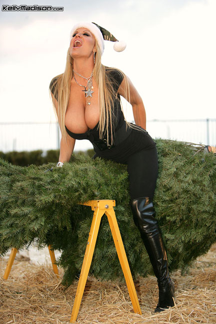 Merry Christmas big tit lovers by 2busty.net blog and kellymadison.com
