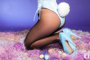 amanda cerny bunny
